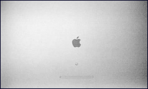 Mac OS X Stuck During Booting Gray Screen Logo and Spinner